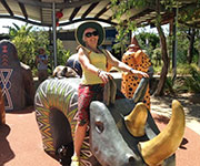 riding the rhinocerous